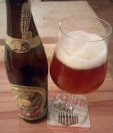 apostelbräu einkorn bier
